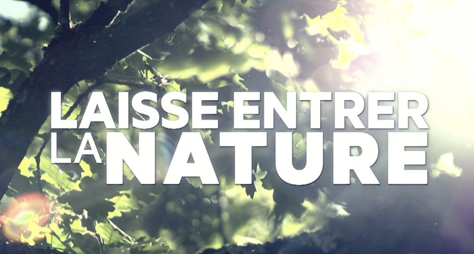 Laisse entrer la nature